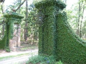 vine gates