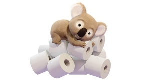 Koala toilet paper