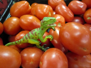T Rex tomatoes